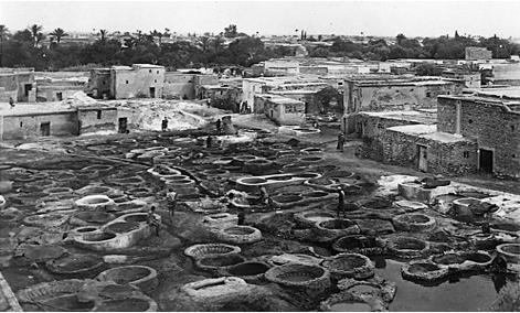 Cuves des tanneurs Marrakech