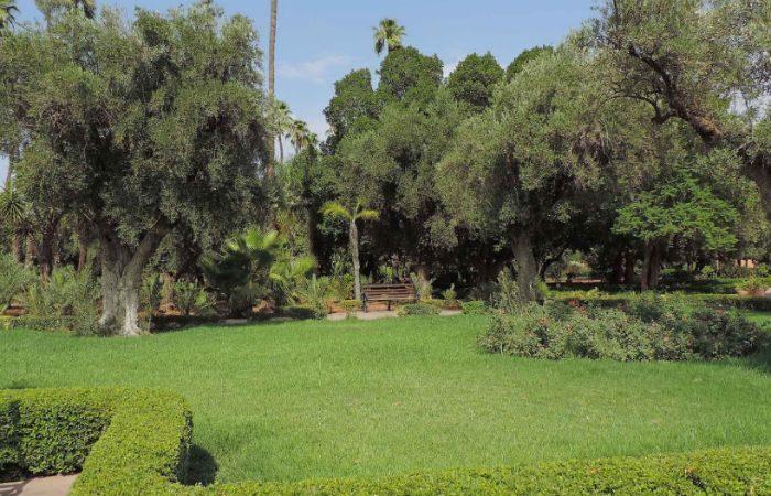 Parc el harti parc et jardin public sur my little kech - My little jardin ...
