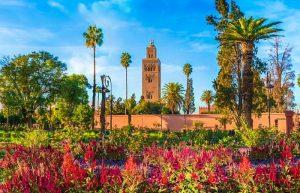 Printemps de Marrakech _ Plus de 50 000 fleurs plantées dans la ville ocre